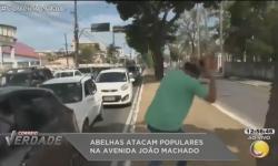 ASSISTA: Abelhas atacam Emerson Mofi durante link ao vivo na TV Correio