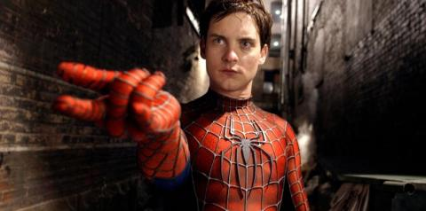 Querendo virar Homem-Aranha, irmãos se deixam ser picados por aranha venenosa