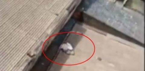 VÍDEO CHOCANTE: Mãe é presa após tentar abortar e deixar bebê para morrer em telhado