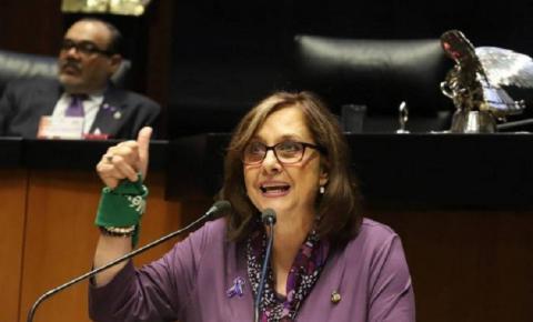 Senadora esquece câmera ligada e aparece nua em videoconferência; confira
