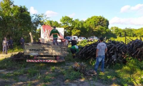 Em ação conjunta com órgãos fiscalizadores, Secretaria de Meio Ambiente de Bayeux realiza recolhimento de madeira de corte ilegal