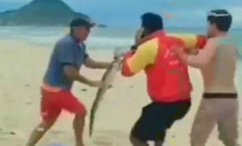 """ASSISTA AO VÍDEO: Filhote de jacaré vira """"arma"""" de briga em praia do Rio de Janeiro"""